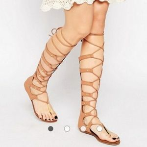 Aldo Shoes, Gladiator Sandals